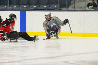 Sled Hockey 3
