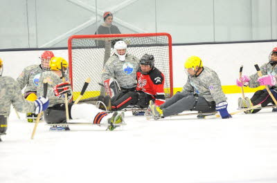 Sled Hockey 4